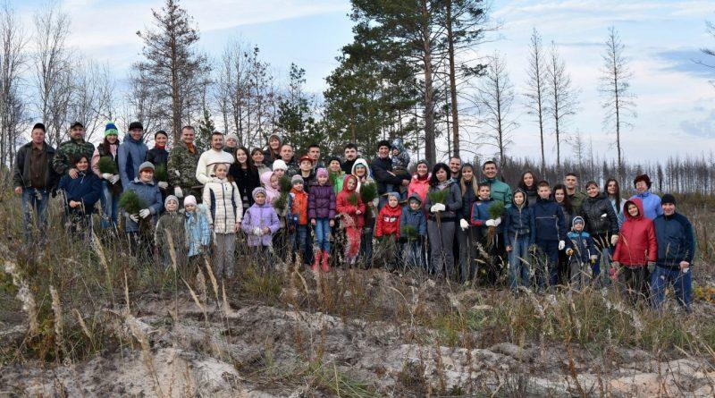 Активисты Благотворительного фонда «Эра Добра» провели экологическую акцию по восстановлению лесного массива в Чаадаевском лесничестве